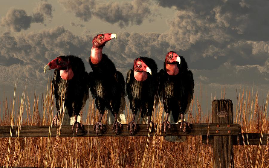 Vulture Digital Art - Vultures On A Fence by Daniel Eskridge