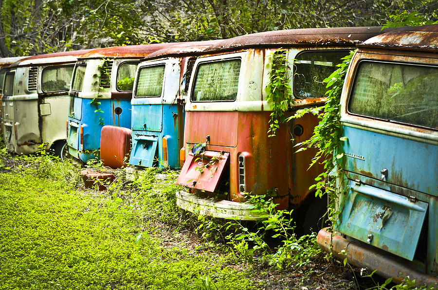 Volkswagen Photograph - Vw Buses by Carolyn Marshall