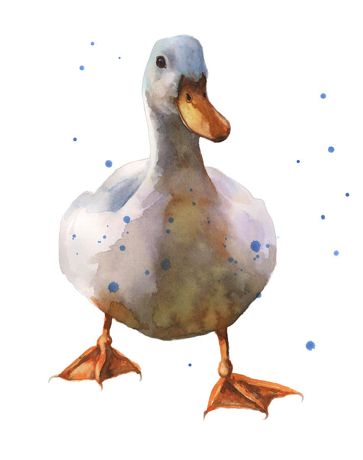 Waddling White Duck Painting By Alison Fennell