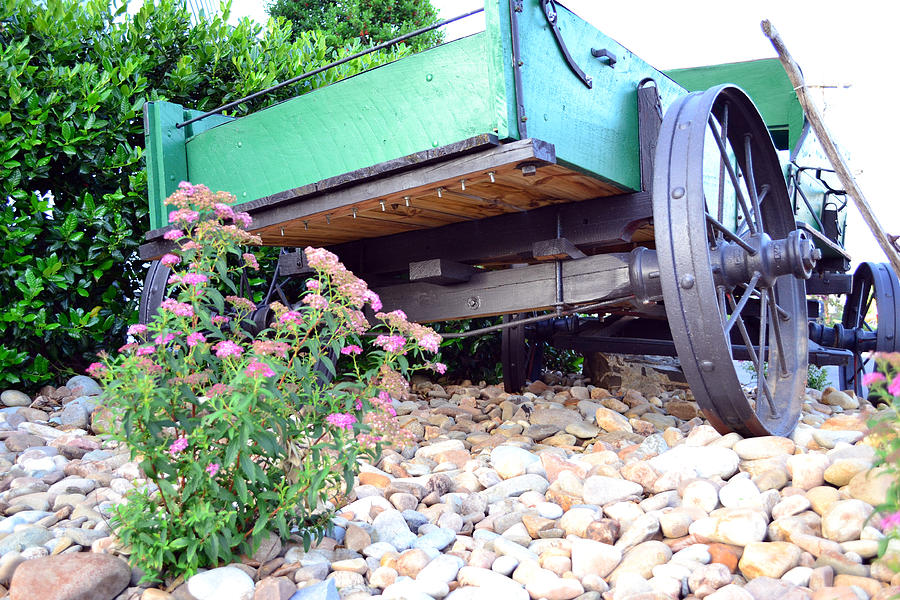 Floral Photograph - Wagon And Blooms by Larry Bishop