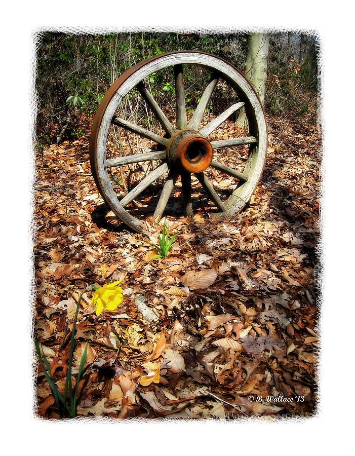 2d Photograph - Wagon Wheel Daffodil by Brian Wallace