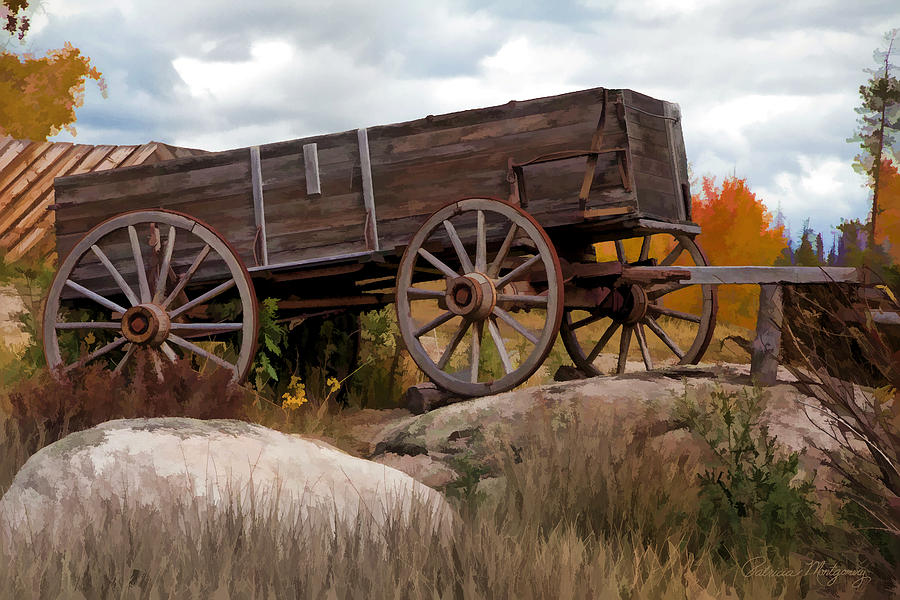 Wagons Ho by Patricia Montgomery