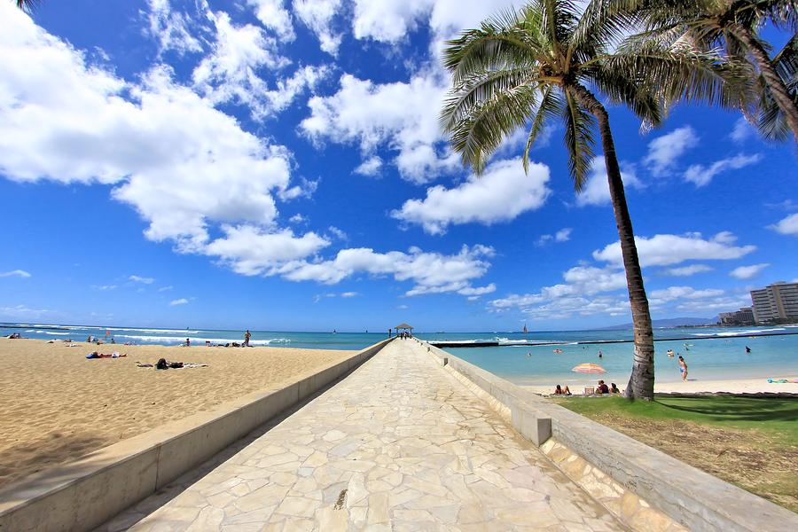 Hawaii Photograph - Waikiki Wall by DJ Florek