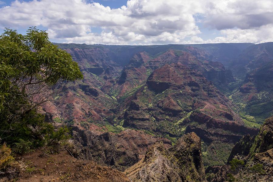Waimea Photograph - Waimea Canyon 5 - Kauai Hawaii by Brian Harig