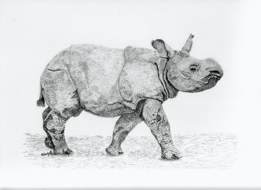 Baby Rhino Drawing - Wait Up Mom by Wendy Brunell