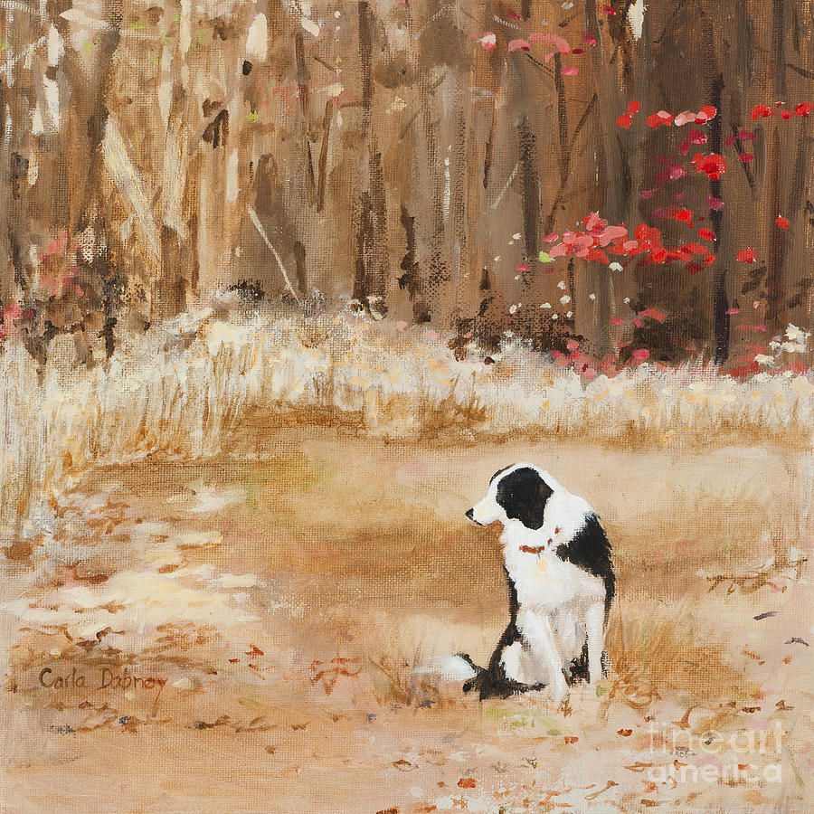 Border Collie Painting - Waiting at Woods Edge by Carla Dabney