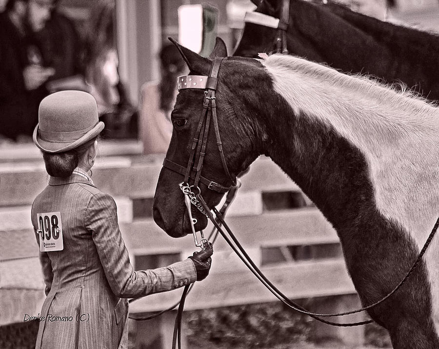 Horse Photograph - Waiting For A Decision by Denise Romano