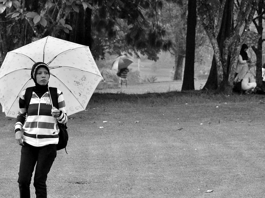 Umbrella Photograph - Waiting For A Friend by Achmad Bachtiar