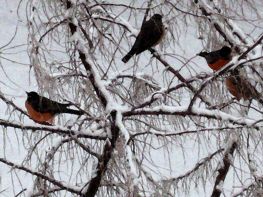 Season Photograph - Waiting For Spring by Kathy Bassett