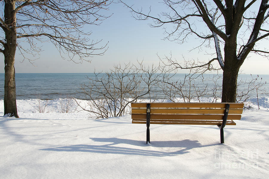 Bench Photograph - Waiting For Spring by Laurel Best