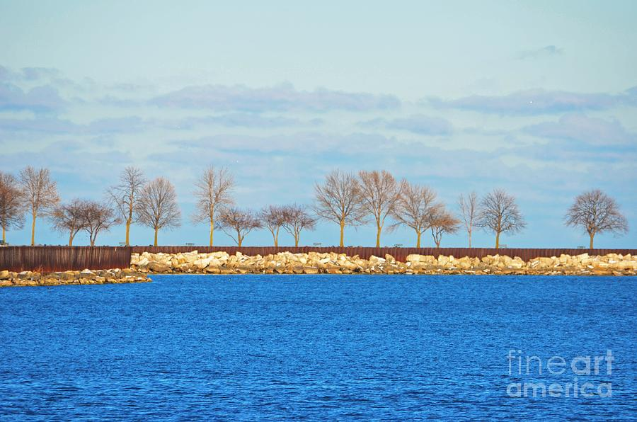 Waiting For Summer - Trees At The Edge Photograph - Waiting For Summer - Trees At The Edge by Mary Machare