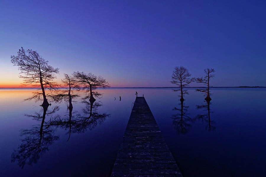 Lake Photograph - Waiting by Liyun Yu