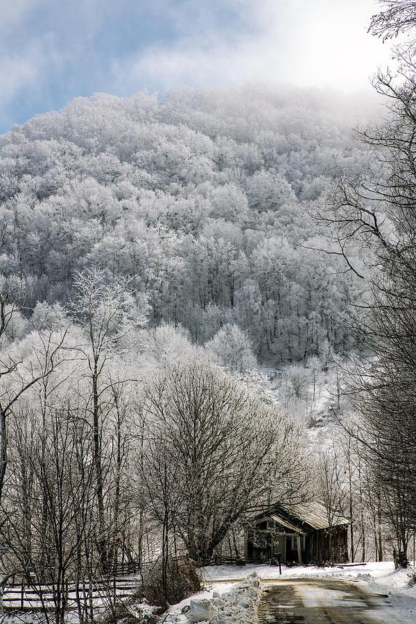 Snow Photograph - Waiting Out Winter by John Haldane
