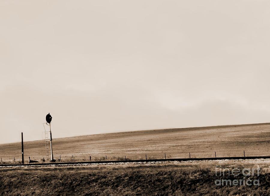 Landscape Digital Art - Waiting To Change Se by Tim Richards