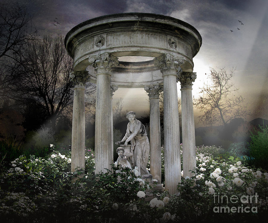 Photo Photograph - Wake Up My Sleepy White Roses - Sunlight Version by Peter Awax