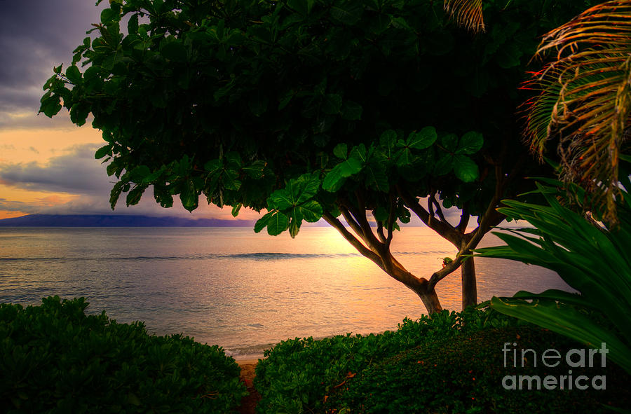 Beach Photograph - Waking Kaanapali  by Kelly Wade