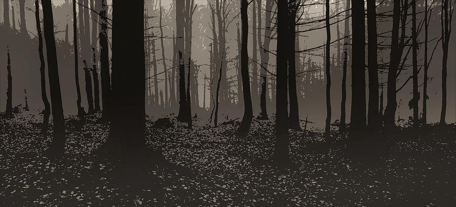 Poster Photograph - Wald Poster by Jaromir Hron