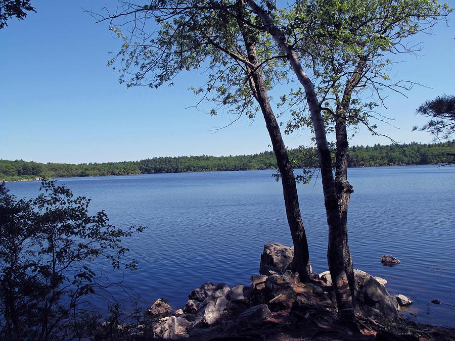 Pond Photograph - Walden Pond Saugus Ma by Barbara McDevitt