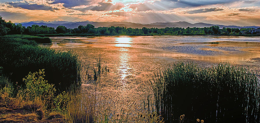 Water Photograph - Walden Ponds Sunset  by Brian Kerls