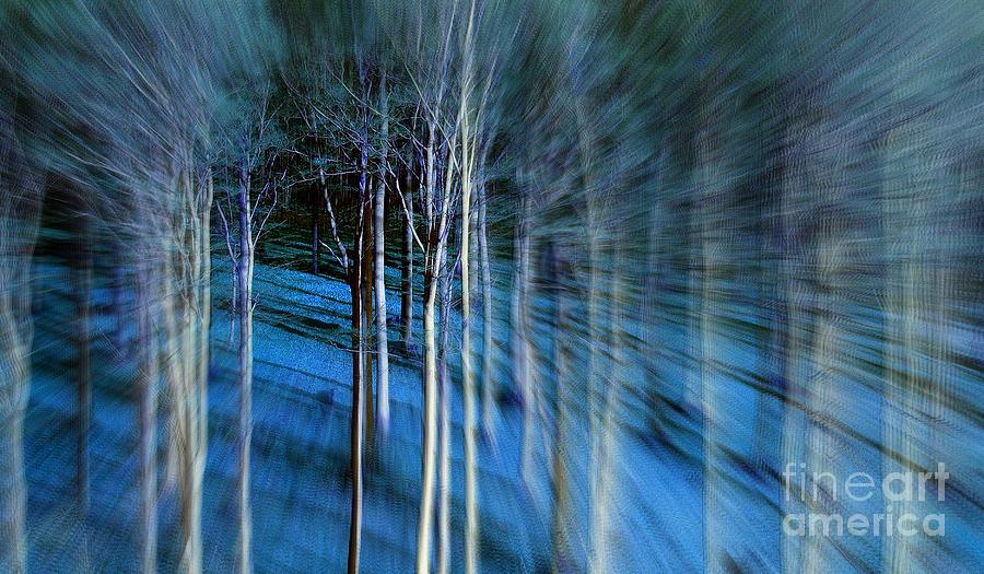 Foto Digital Art - Waldrausch by Vera  Laake
