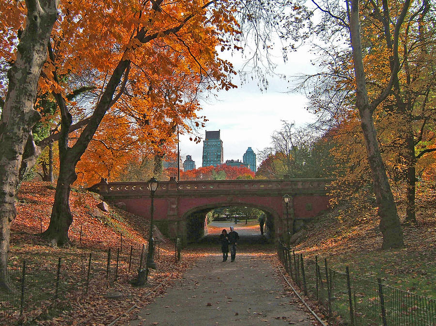 Central Park Photograph - Walk In The Park by Barbara McDevitt