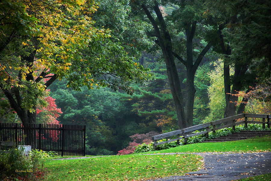 Fall Photograph - Walk In The Park by Christina Rollo