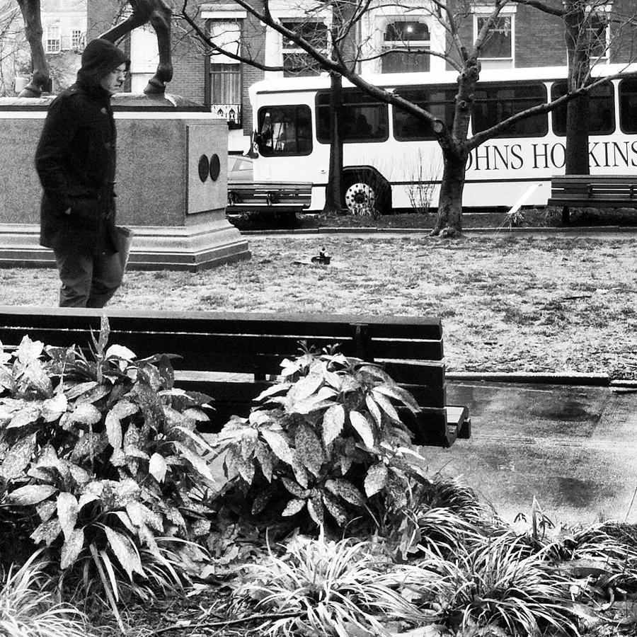 Mount Vernon Photograph - Walk In The Park by Toni Martsoukos