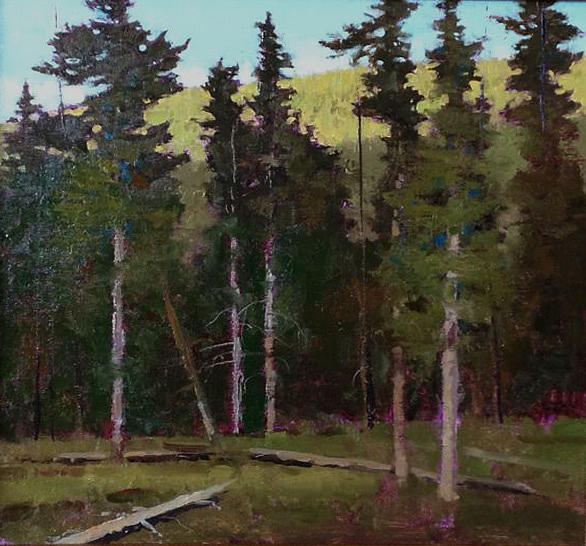 Walk In The Woods Painting by Shanna Kunz