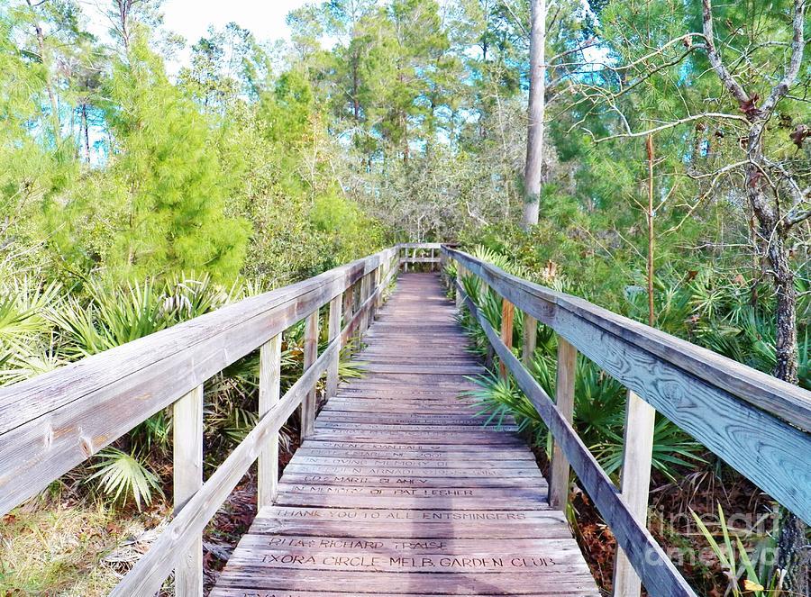 Boardwalk Photograph - Walk This Way by Judy Via-Wolff