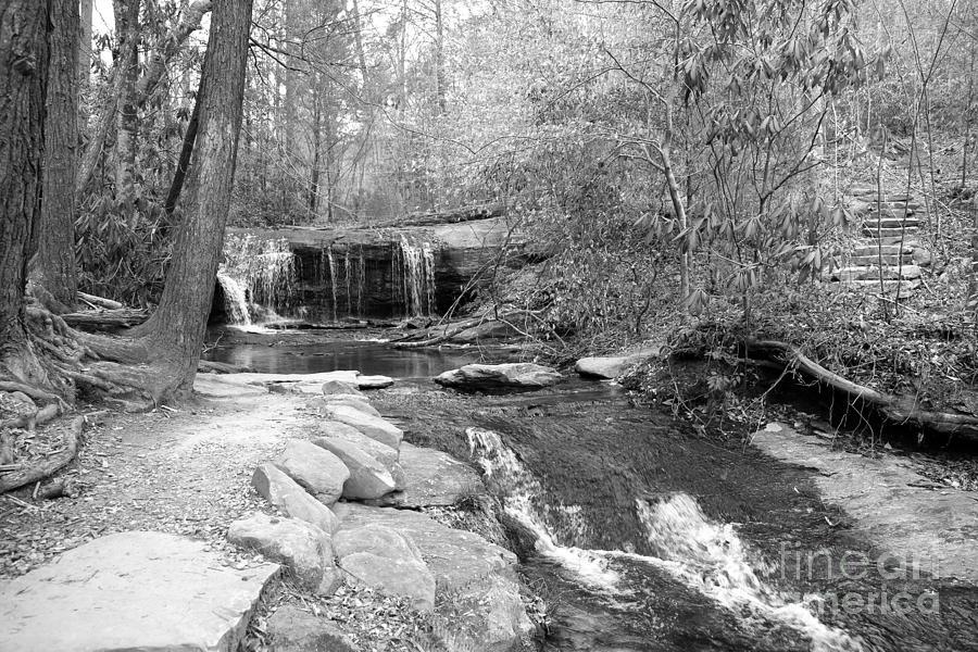 Waterfall Photograph - Walk To The Waterfall by Carol Groenen