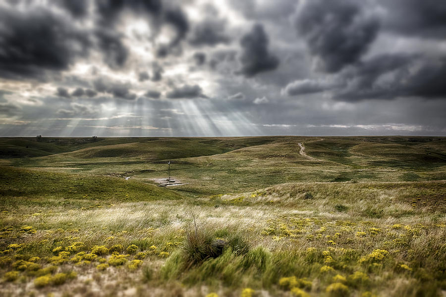 Landscapes Photograph - Walkabout  by Garett Gabriel