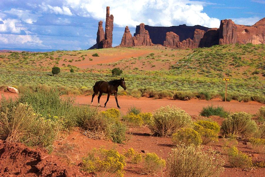 Monument Valley Photograph - Walking Down The Road by Pamela Schreckengost