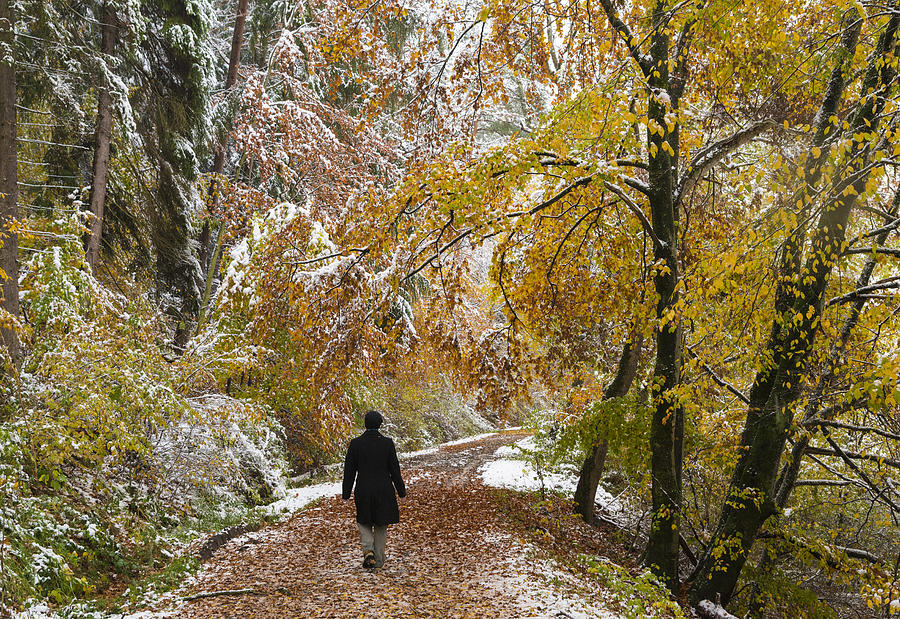 Fall Photograph - Walking Into Winter - Beautiful Autumnal Trees And The First Snow Of The Year by Matthias Hauser