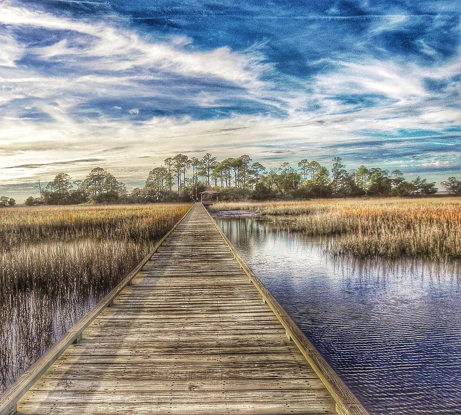 Marsh Grass Photograph - Walking On Water by Patricia Greer