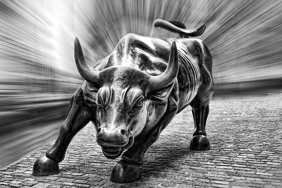 Wall Street Bull Black And White Photograph By Wes Dotty Weber