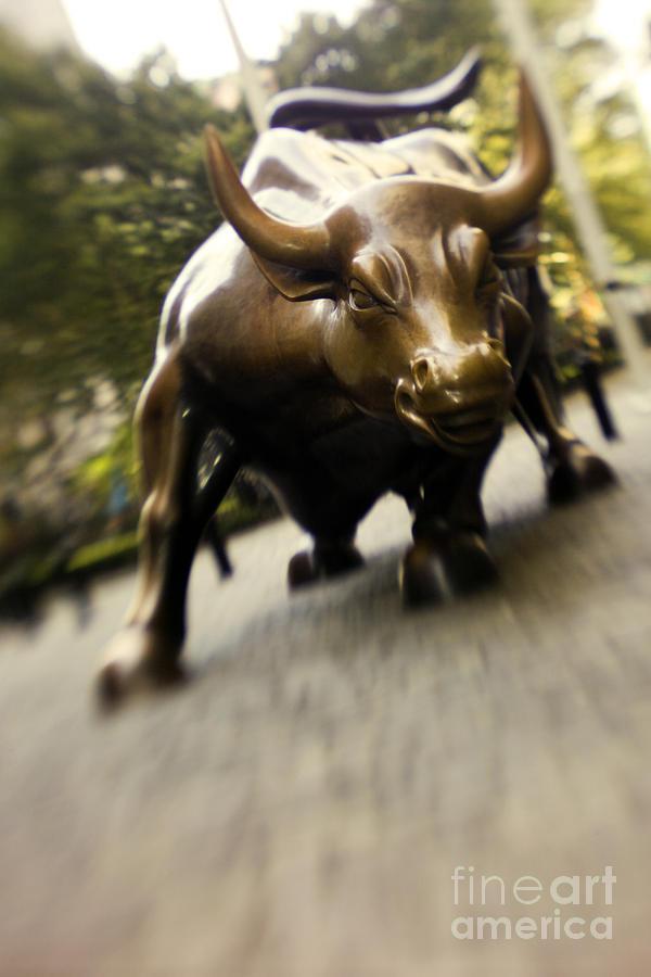 Wall Photograph - Wall Street Bull by Tony Cordoza