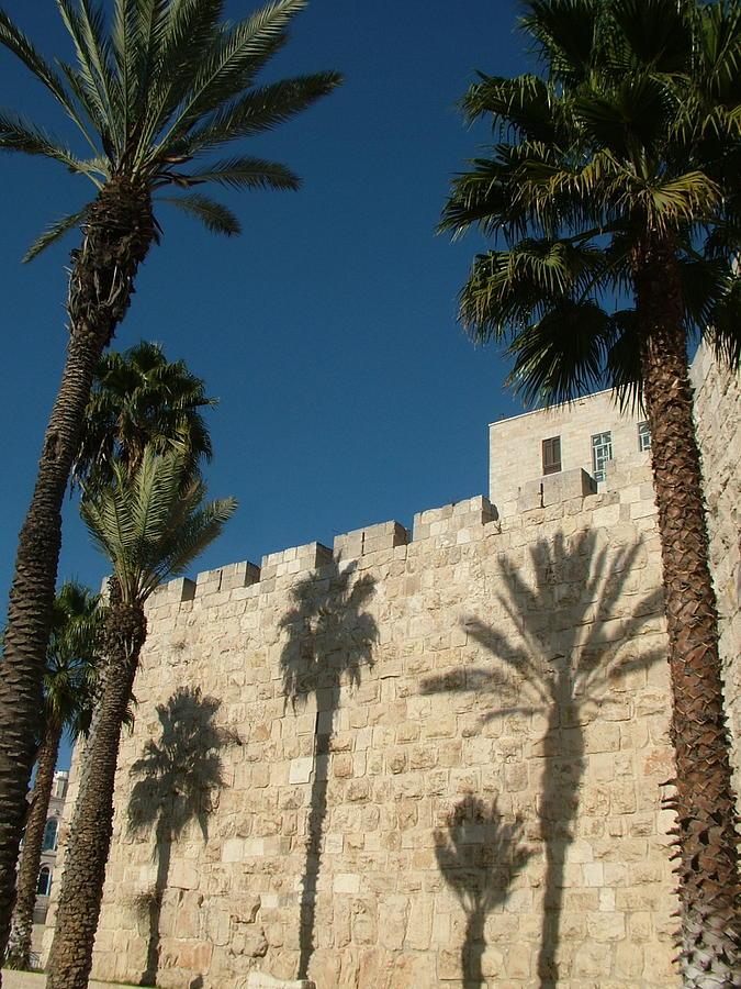 Walls of Jerusalem with palm tree shadows by Rita Adams
