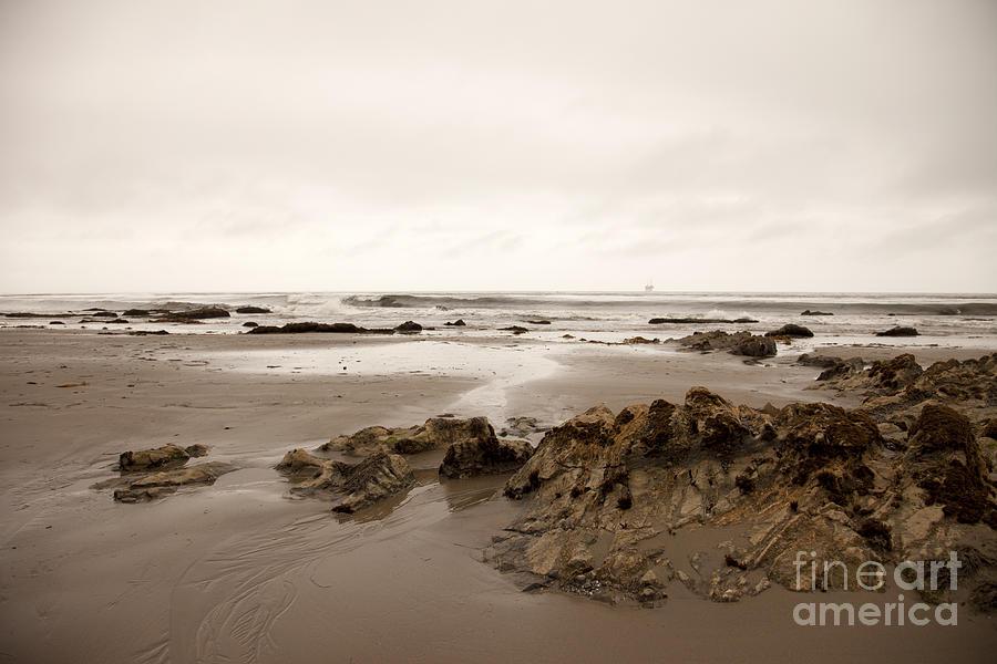 california Beach Photograph - Wandering by Amanda Barcon