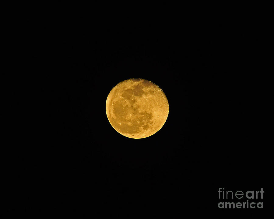 Moon Photograph - Waning Passover Moon by Al Powell Photography USA