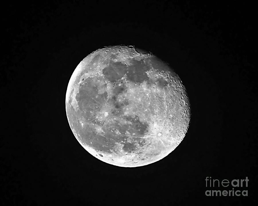 Moon Photograph - Waning Pink Moon by Al Powell Photography USA