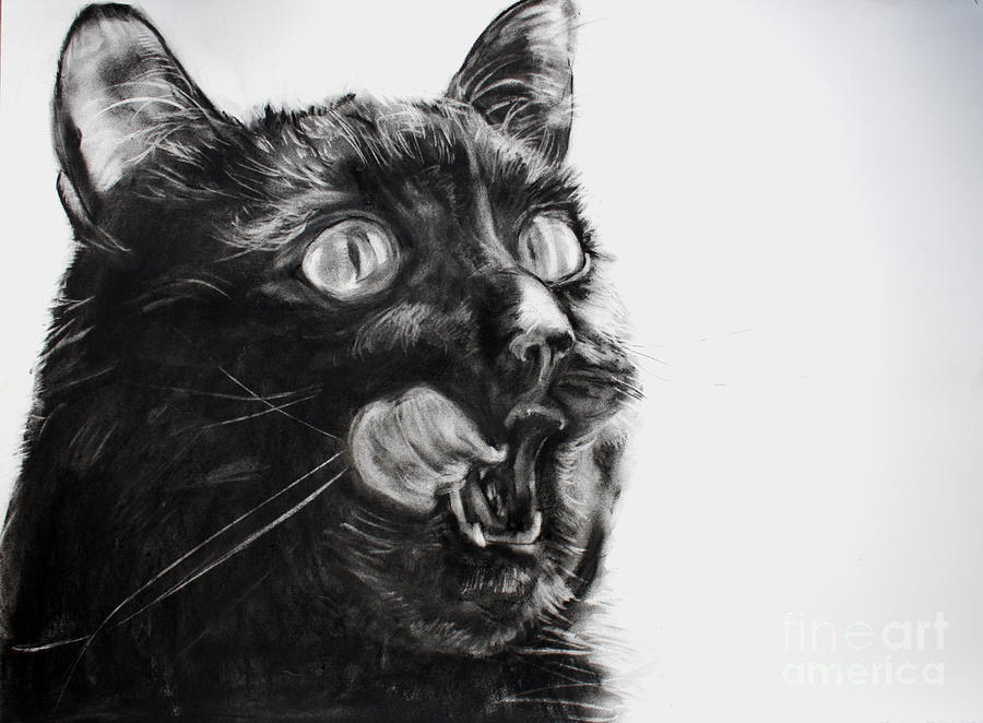 Charcoal Drawing - Wanting by Valerie  Bruzzi