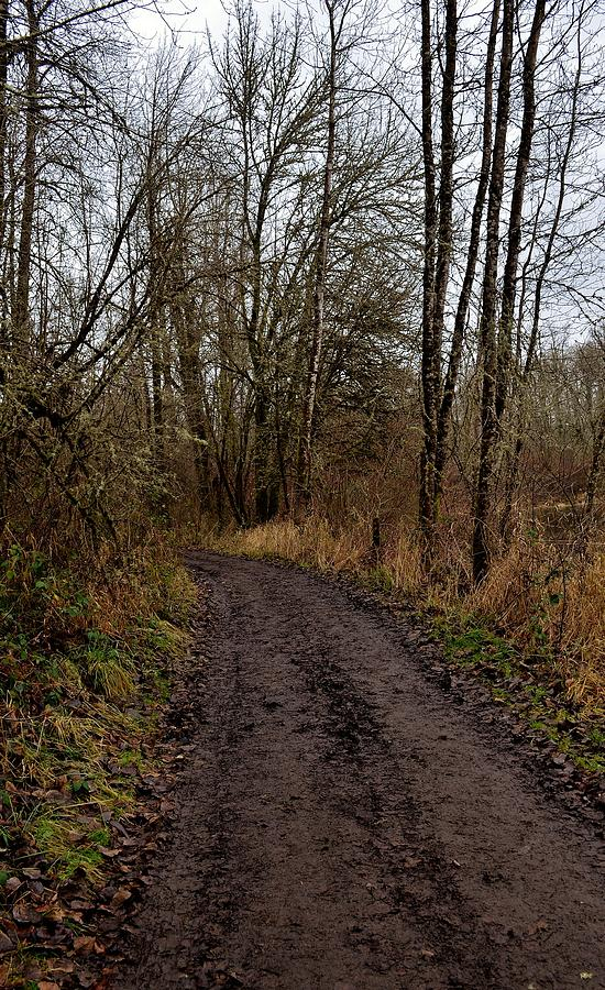 Oregon Photograph - Wapato State Access Area by Sara Edens
