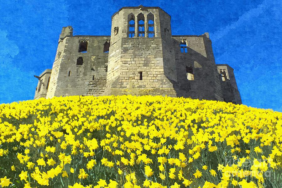 Warkworth Castle Daffodils Photo Art by Les Bell