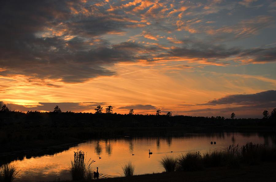 Warm Sunset by Jennifer Stockman