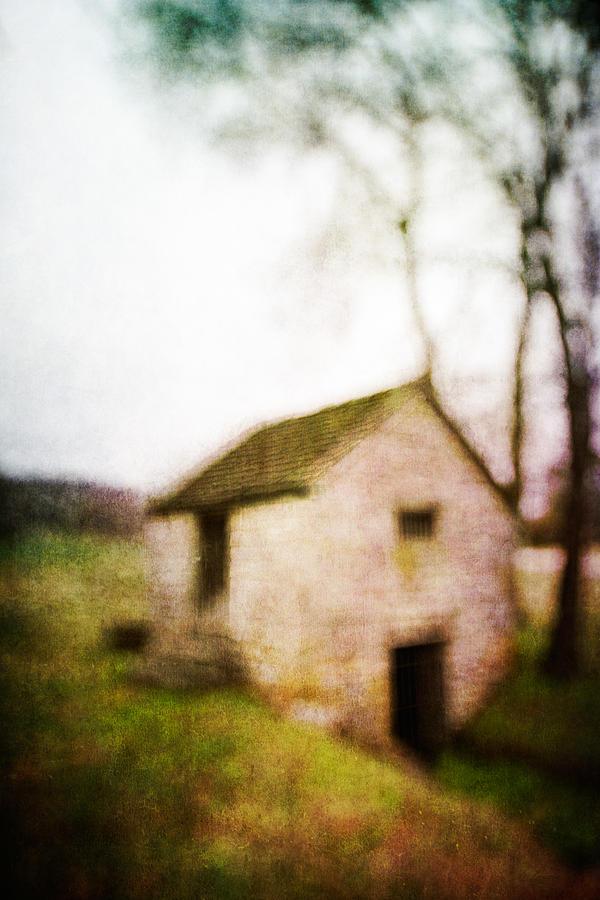 Blur Photograph - Warner Park Springhouse by David Morel