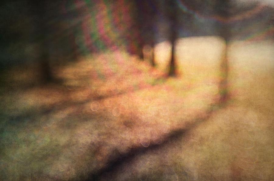Blur Photograph - Warner Park Sunrise by David Morel