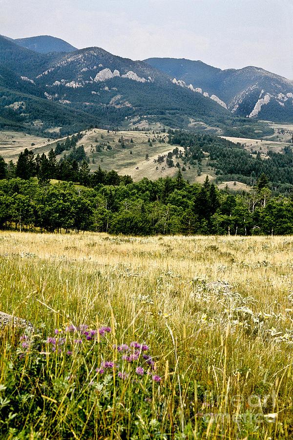 Wilderness Photograph - Washake Wilderness by Kathy McClure