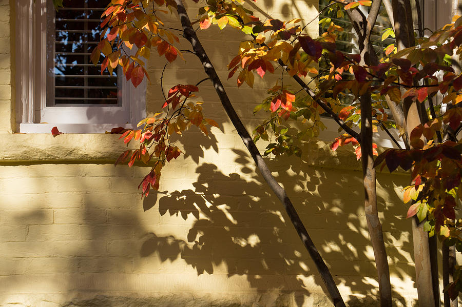 Shadows Photograph - Washington D C Facades - Dupont Circle Neighborhood - Playing With Shadows by Georgia Mizuleva