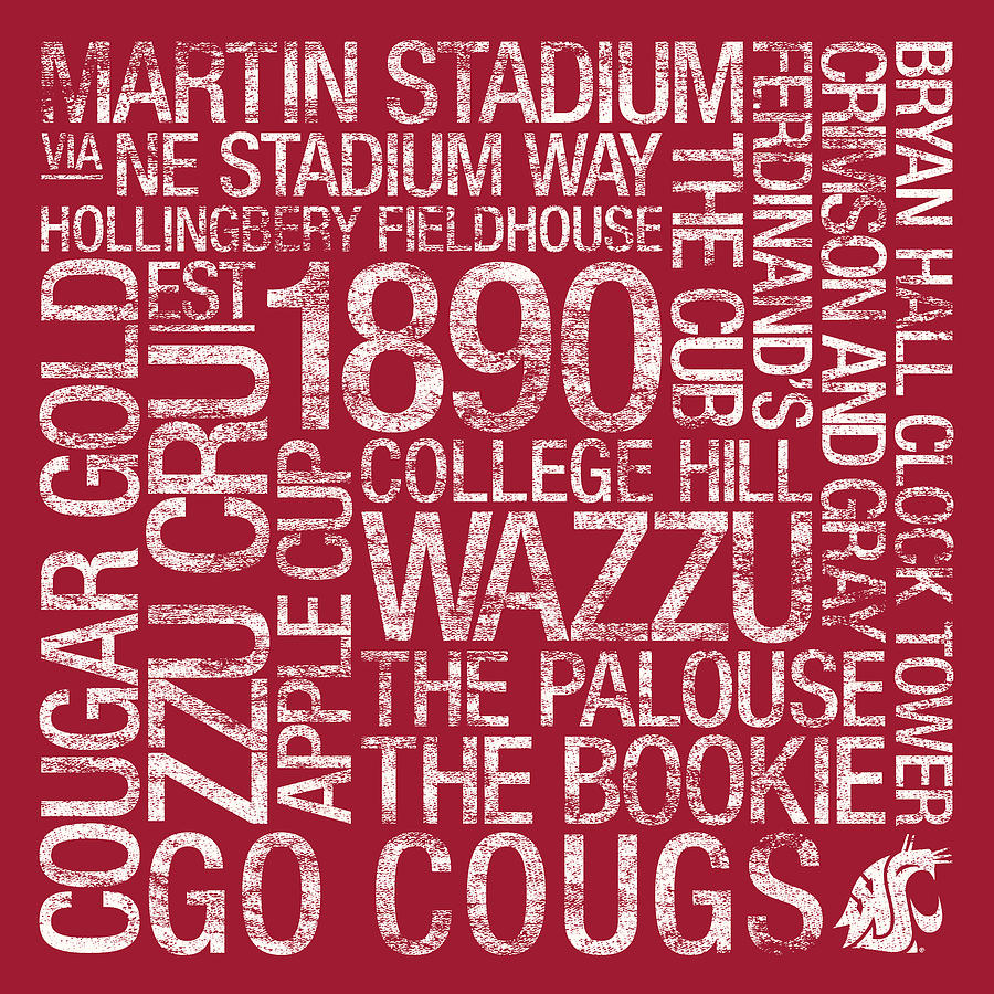 Photo Photograph - Washington State College Colors Subway Art by Replay Photos