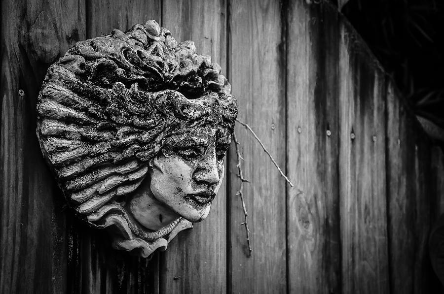 Statue Photograph - Watcher Of The Yard by Shawn Lyte